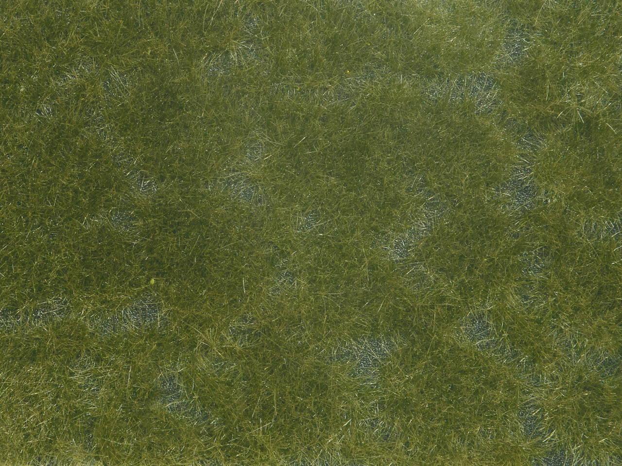 Bodend.-Foliage dunkelgrün