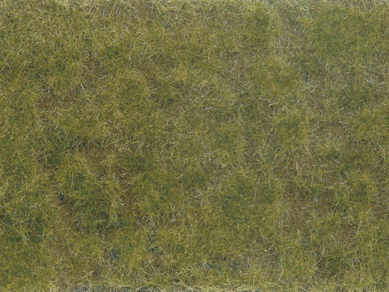 Bodend.-Foliage grün/braun